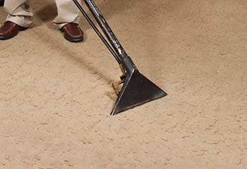How To Remove Stains From Carpet - Madison Heights