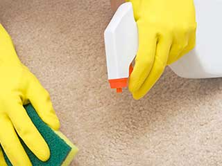 How to Create Eco-Friendly Products | San Marino Carpet Cleaning